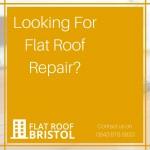 Flat Roof Repair Company