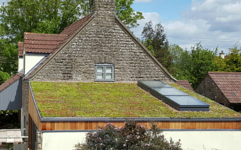 green flat roof bristol