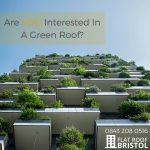 green roof contractors Bristol