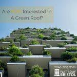 green roof contractors Bristol