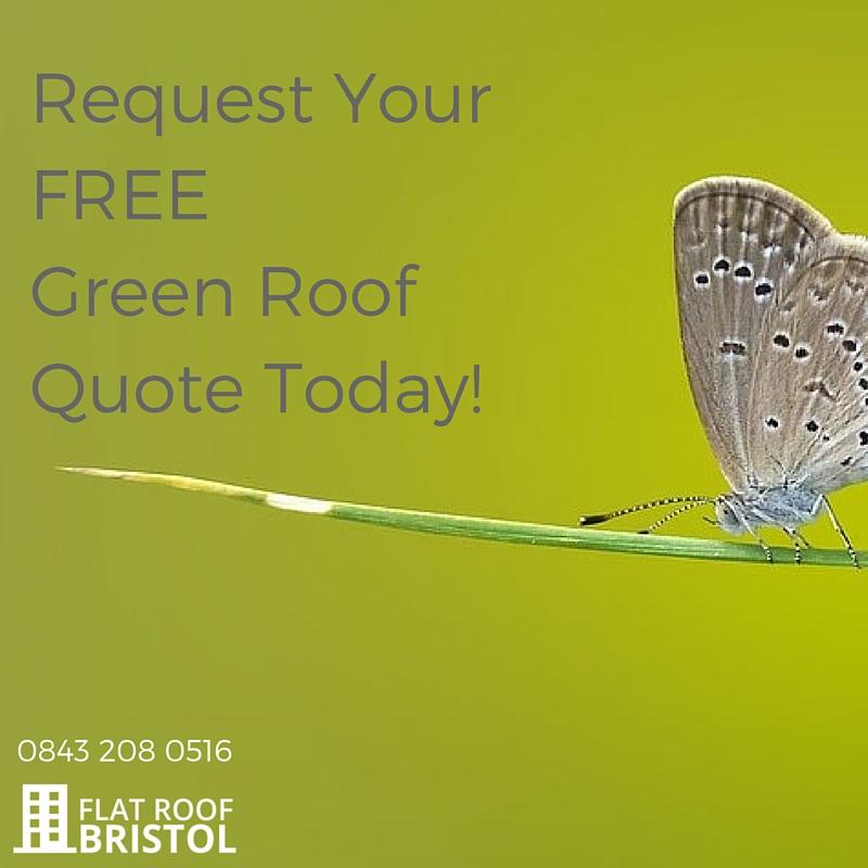 green roof contractors